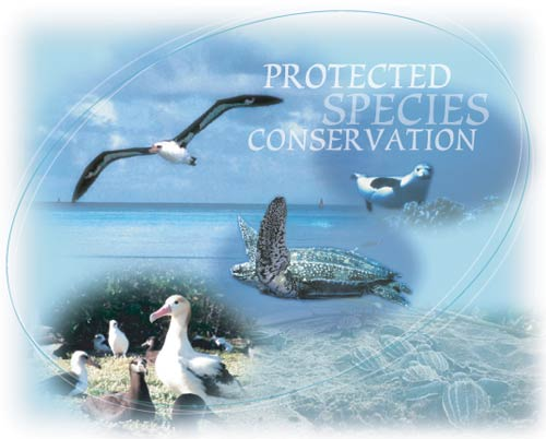 Protected Species Overview