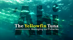`Ahi, The Yellowfin Tuna: Managing Our Fisheries (2014)
