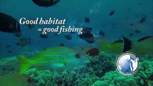Good Habitat = Good Fishing