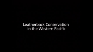 Leatherback pic