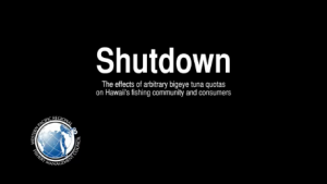 Shutdown Video screen shot